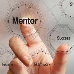 mentor networks