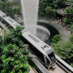 electric train going through a green area is a city