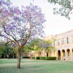 This is an image of a jacaranda tree in the middle of UQ's Great Court