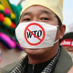 This is an image of a man wearing an anti-WTO mask